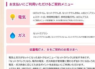 point_denki_ryoukin1.jpg